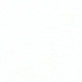 COTONETTE BLANCHE